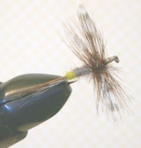 Fly Fishing: Adams Spent Wing Dry Fly